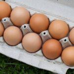 パック入りの赤い卵
