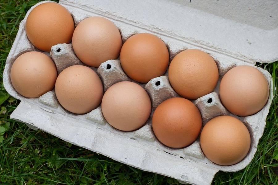 安心安全の卵